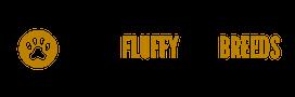 Logo for Small Fluffy Dog Breeds website